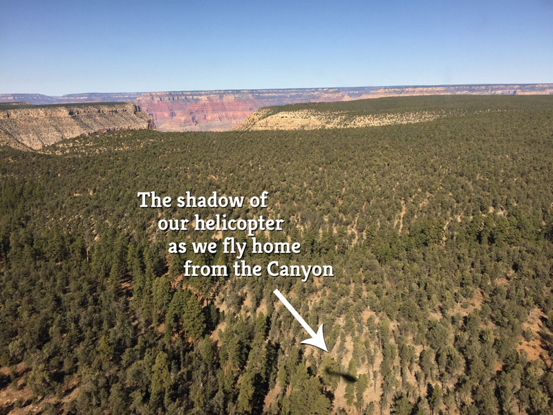 Shadow of our helicopter speeding back home after touring south and north rims of the Grand Canyon