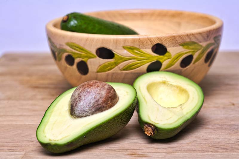 avocado brunch