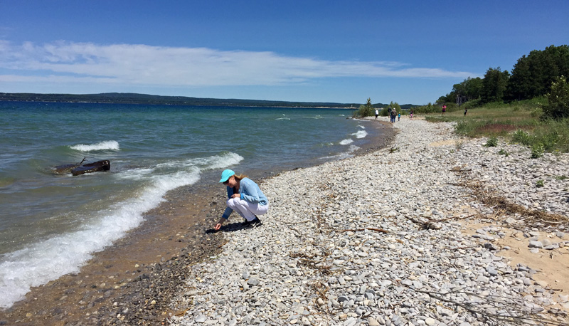 Took an hour, but the author's search for the elusive Petoskey stone paid off!