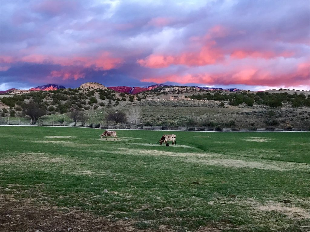 Sunset at Canyon of the Ancients Guest Ranch