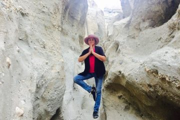 Author at San Andreas Fault, Coachella Valley, CA