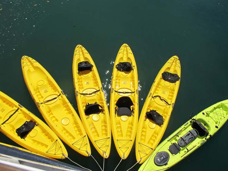 Costa Rica Adventure Cruise - kayaking