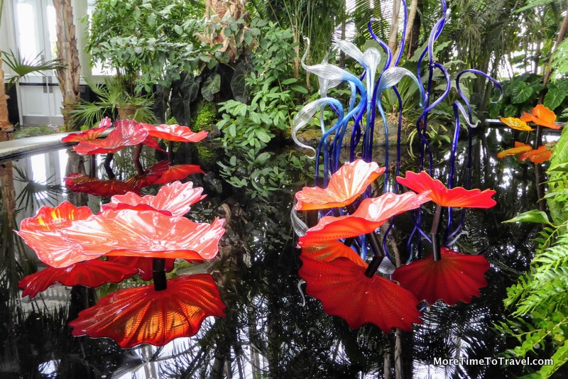 Chihuly Macchia Forest at NYBG
