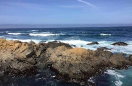 things to do in mendocino county