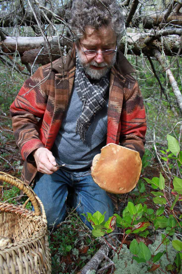 mushroom hunting on Long Beach Peninsula