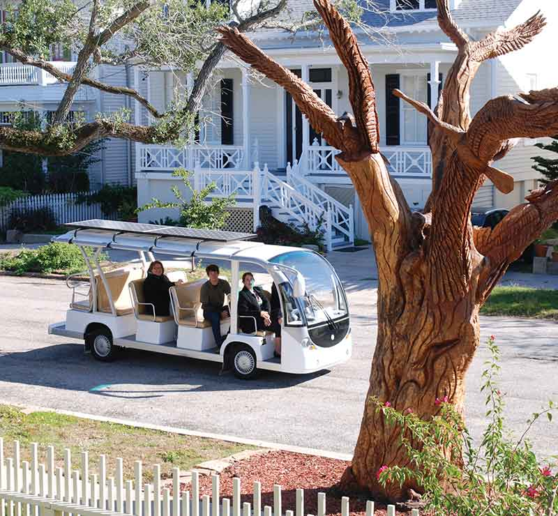 things to do in Galveston - tree sculptures tour