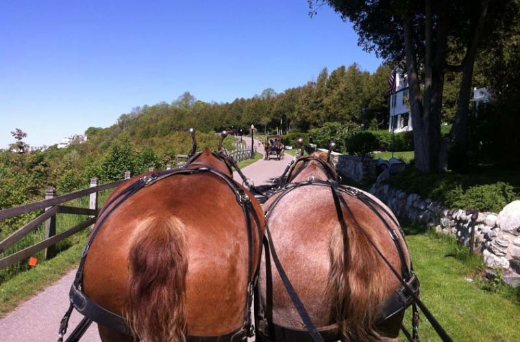 Horses on Mackinac Island