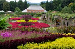 Biltmore Summer Blooms & Conservatory (Credit: Biltmore Corporation)