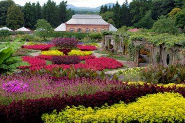 Biltmore Summer Blooms & Conservatory (Credit: Biltmore Corporation)