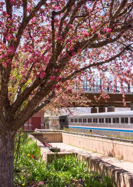 Amtrak California Zephyr in Glenwood Springs, Colorado