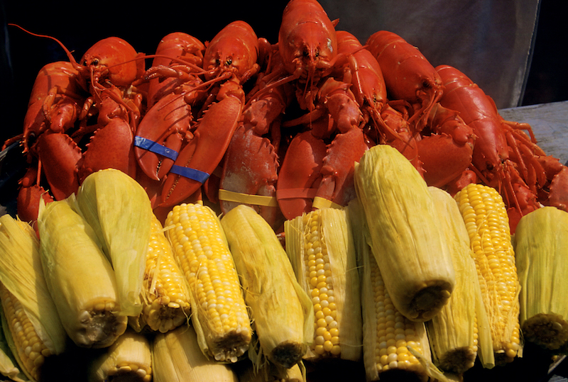 Succulent lobster and corn