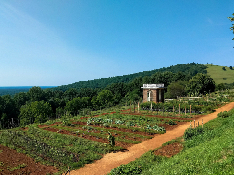 Historic gardens of Monticello designed by Thomas Jefferson