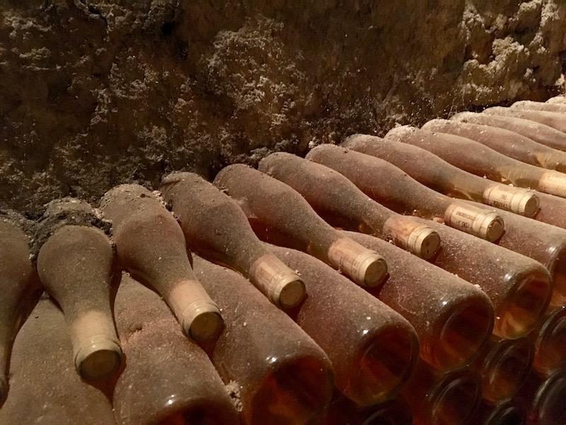 Dusty bottles in the cellar