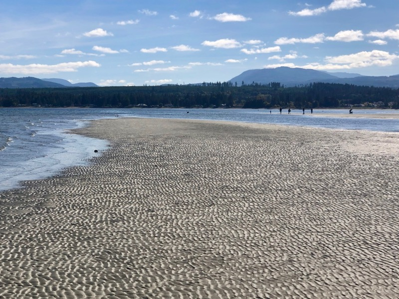 Low tide sand bars at Rathtrevor Beach, Parksville, BC