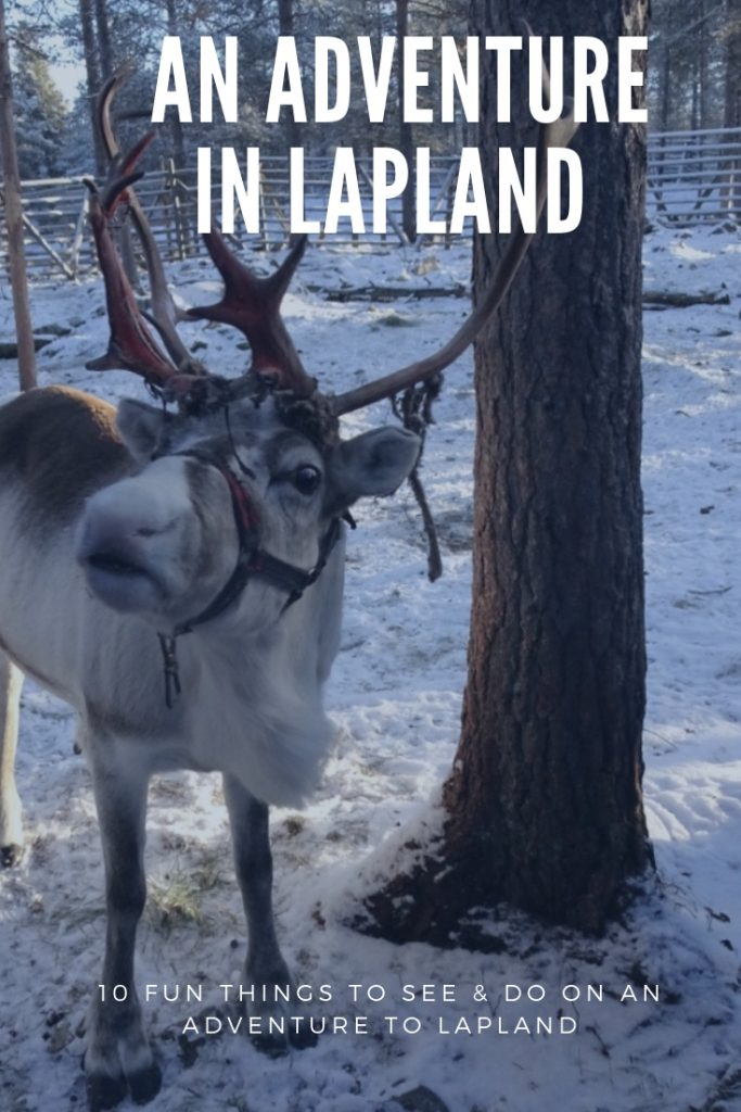 What to see and do in Lapland