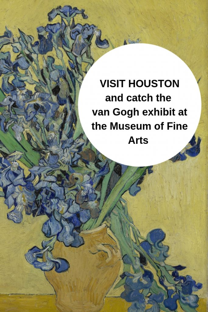 Houston Weekend - Van Gogh