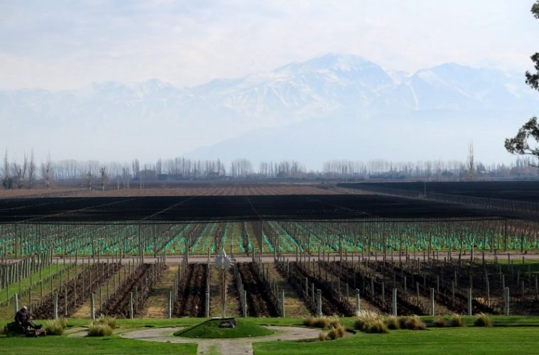 Bodega Norton winery is in the Mendoza wine region