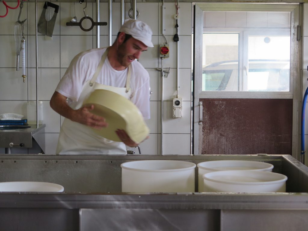 Visit a cheesemaker to see how its made.