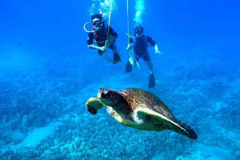 SNUBA in action, Hawks Cay Resort