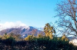View of Mt. St. Helena in Calistoga