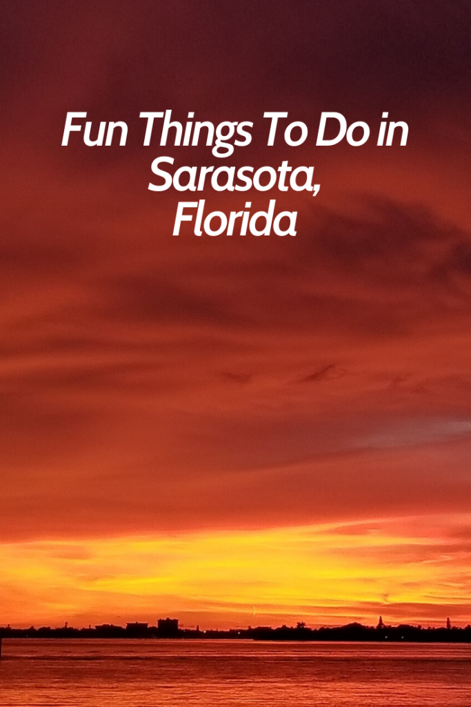 What to Do in Sarasota Pin