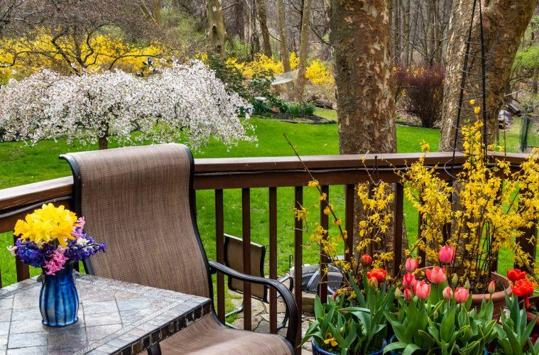 View from Rosemarie's Brandywine backyard