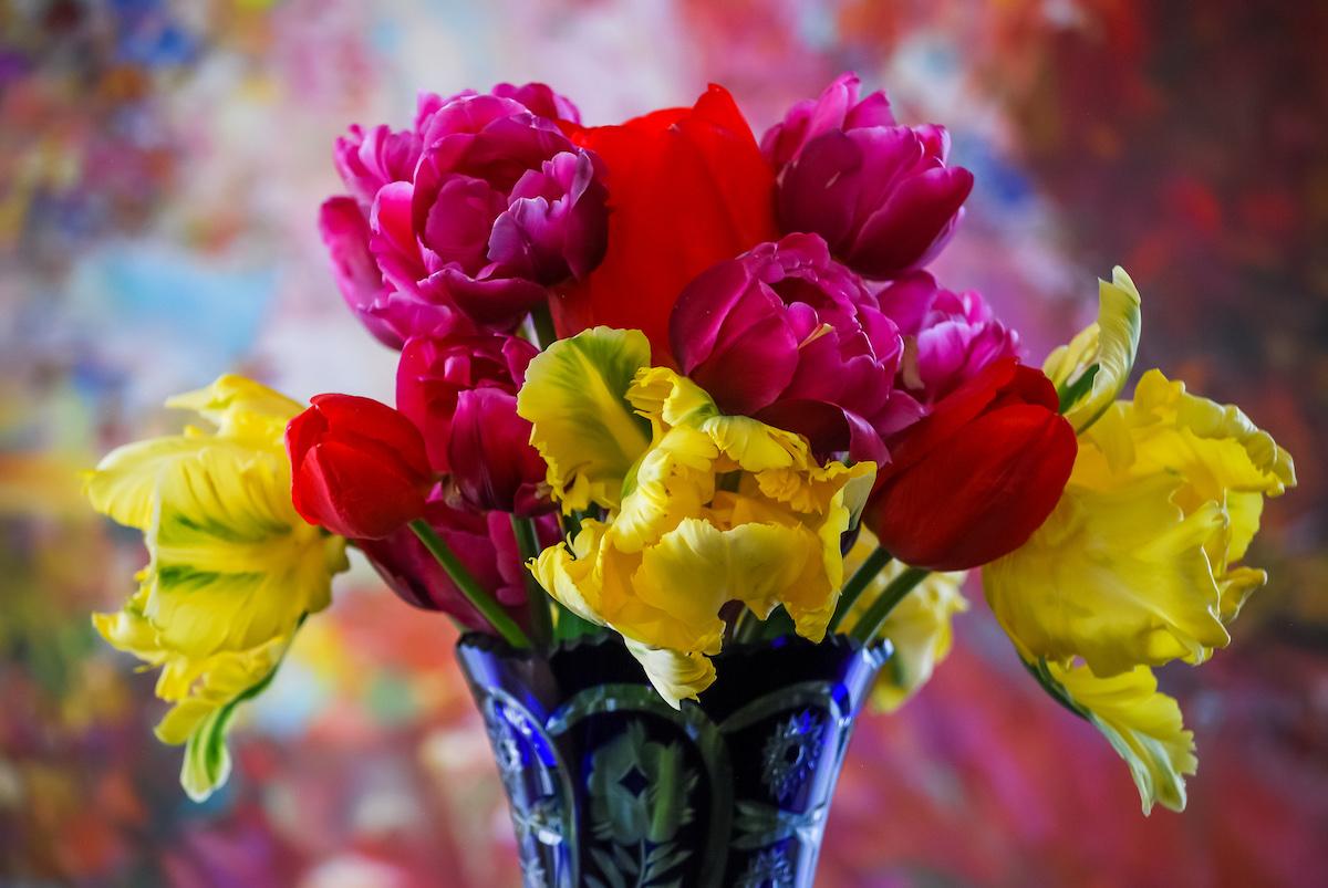 Spring blooms in Brandywine
