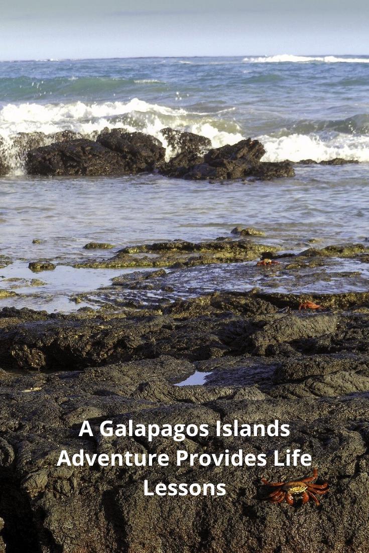 Galapagos Pin