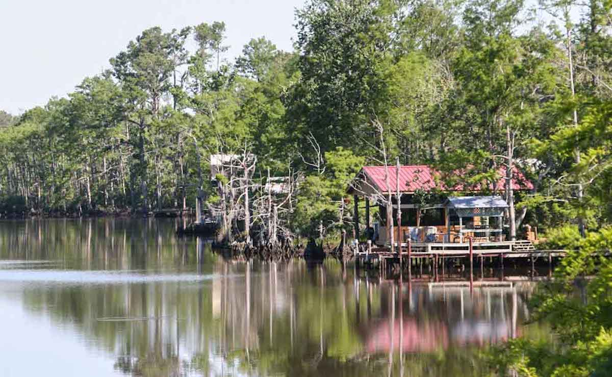 In South Louisiana, begin your Northshore journey biking on Tammany Trace through a tunnel of trees and stunning sights along the way