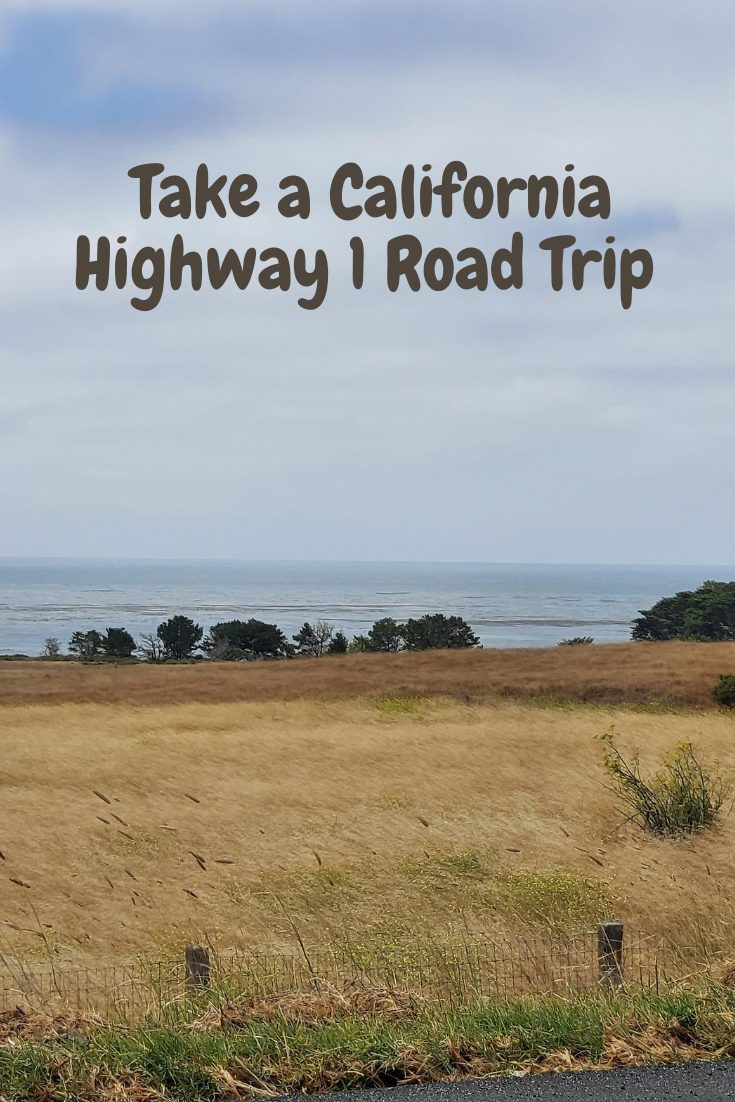 Take A California Highway 1 Road Trip