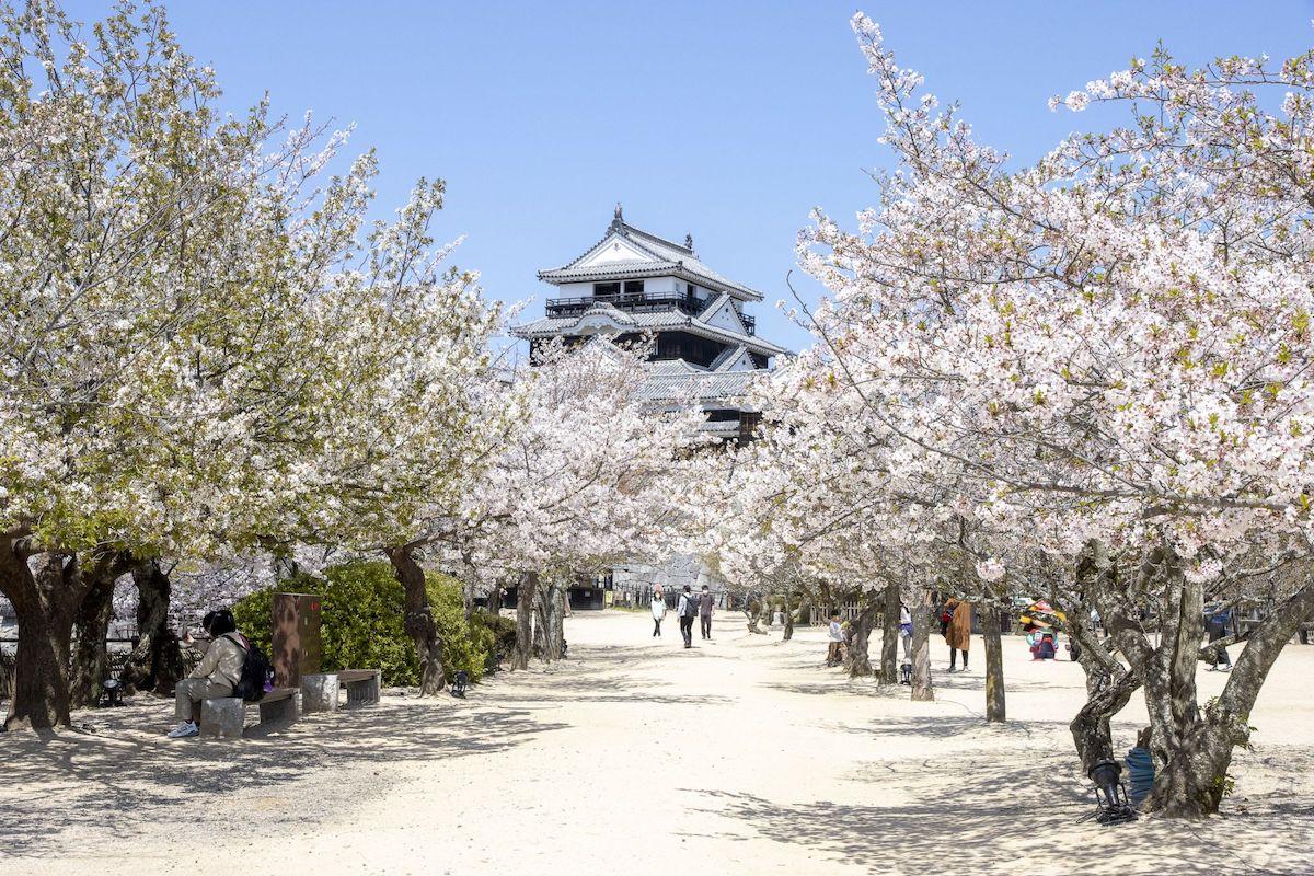 Can't wait to visit Matsuyama Castle (Credit: Japan National Tourist Organization)