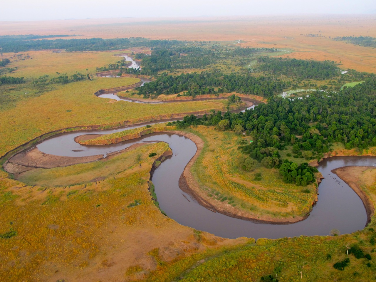 wildlife watching in Kenya's Masaii Mara from a hot-air ballon