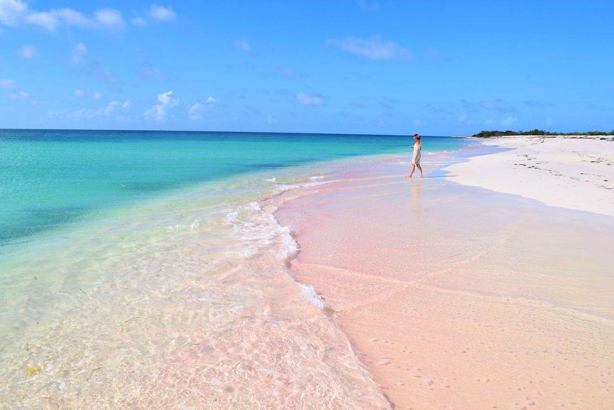 Barbuda Pink Sands