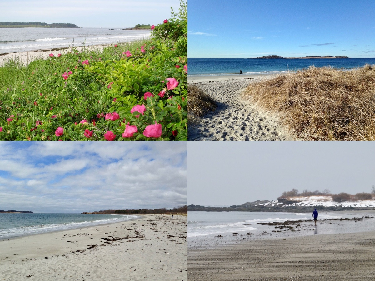 Crescent Beach in spring, summer, fall, and winter