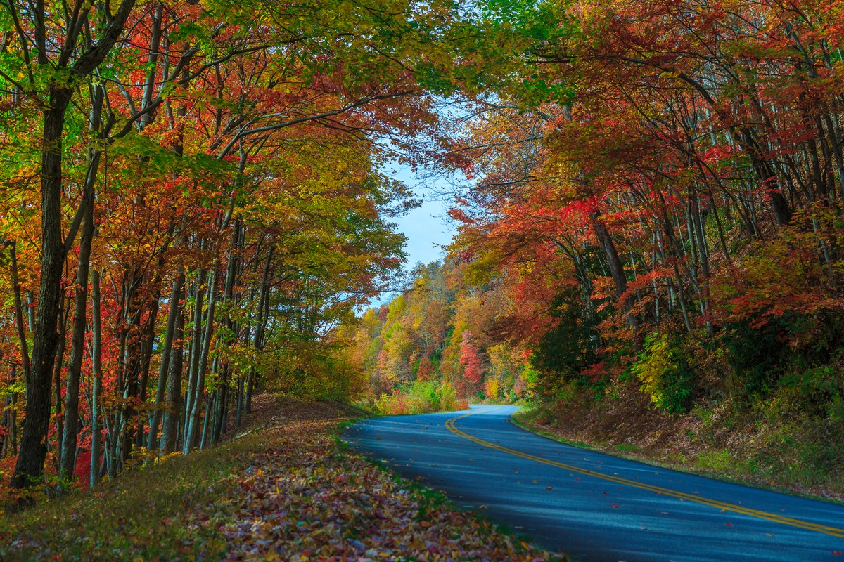 Colorful autumn foliage along the Blue Ridge Parkway