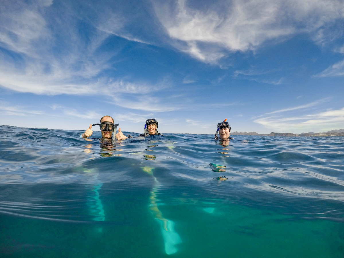 whale sharks in La Paz: Bobbing in the water waiting...
