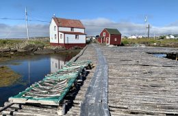 Dwyer Premises and salt cod drying on Fogo Island