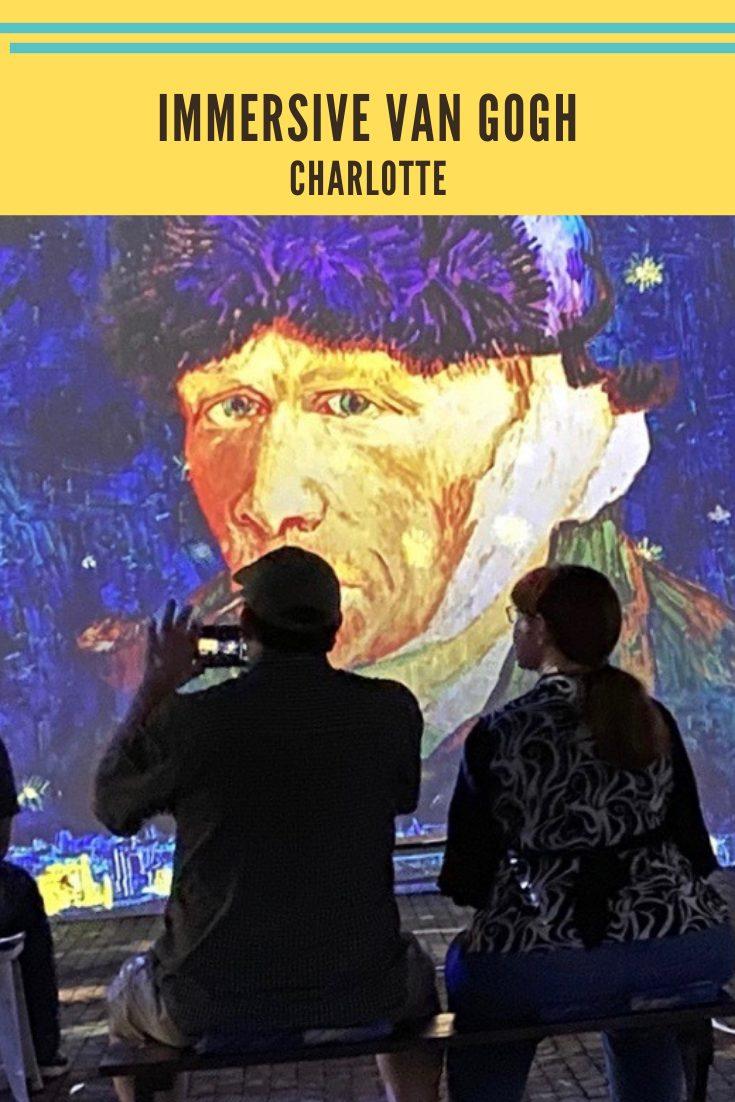 Immersive van Gogh pin